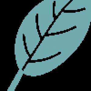 Leaf Logo - teal